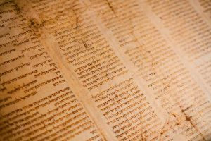 Meaning of the word 'Hamas' in Hebrew