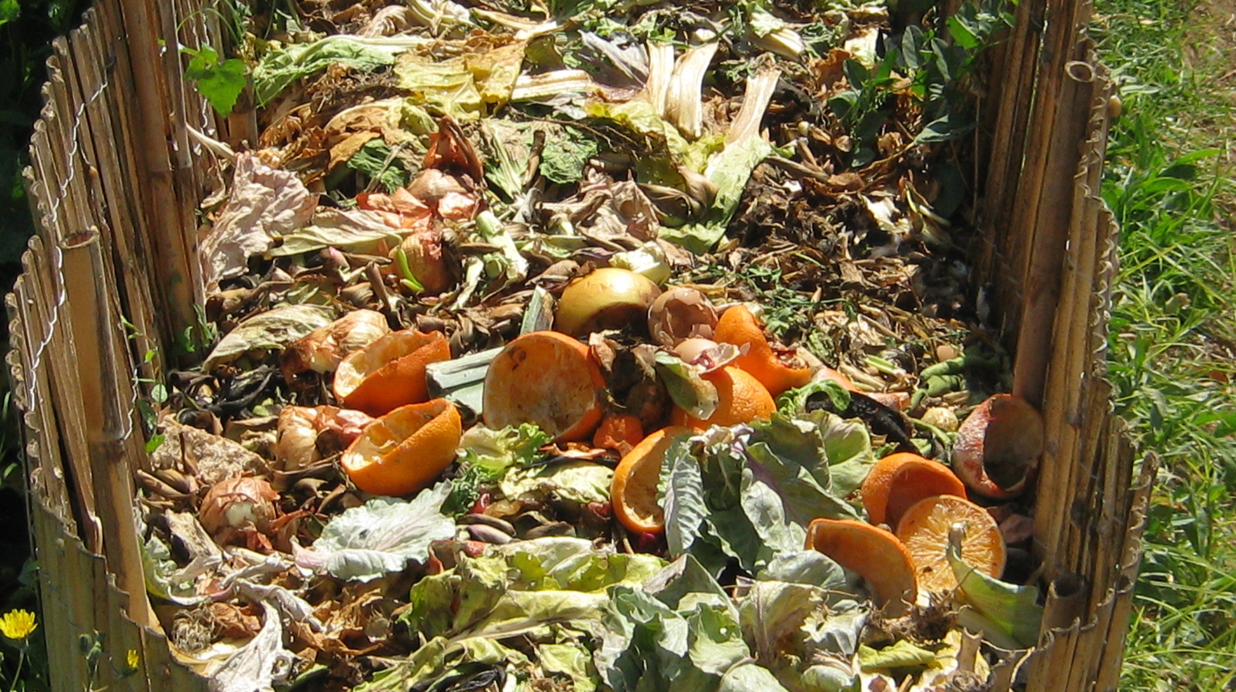 Compost as a Picture of the Fall and Restoration, Sin and Grace