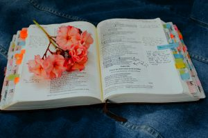 5 Ways to Approach Reading the Bible