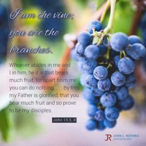 I am the vine; you are the branches. Whoever abides in me and I in him, he it is that bears much fruit, for apart from me you can do nothing. . . . By this my Father is glorified, that you bear much fruit and so prove to be my disciples. - John 15:5, 8