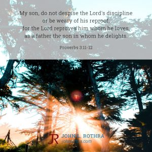 My son, do not despise the Lord's discipline or be weary of his reproof, for the Lord reproves him whom he loves, as a father the son in whom he delights. - Proverbs 3:11-12